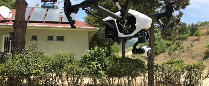 Bursa kestanesi drone ile korunacak