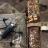 Fransız Drone Üreticisi Parrot, ABD'ye Casus Hava Aracı Üretecek
